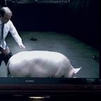 Cameron in stranger than fiction pig sex scandal – David Baldelli